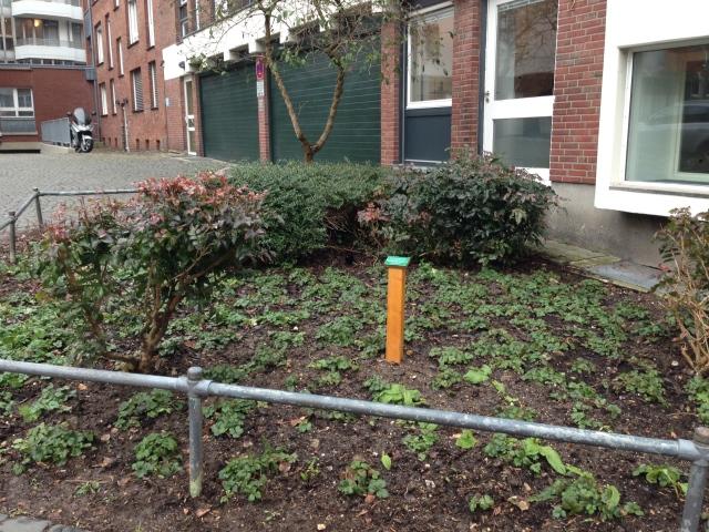 Da ist zu lesen, dass Bürger eine Patenschaft für dieses Fleckchen Grün übernommen haben. (Kreuzung Klappergasse, Rennbahn, Bendelstraße).