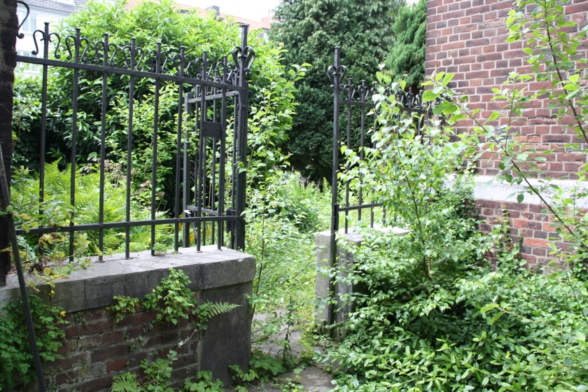 Wo niemand wohnt, da macht sich die Natur breit. So auch in der Klosteranlage der Karmelitinnen in der Aachener Lousbergstraße.