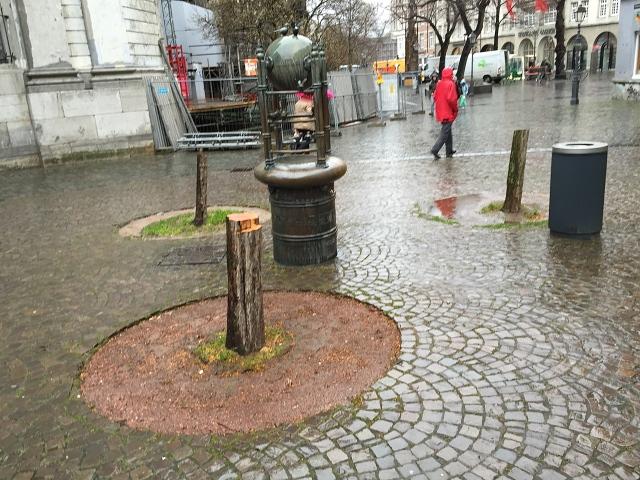 Drei Rest-Bäume, drei Baumscheiben und ein Spatzenbrunnen im strömenden Regen und orkanartigen Wind fotografiert.
