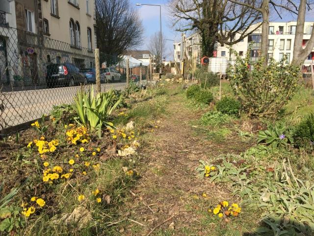 Hier sind keine Gartenbauarchitekten am Werk, sondern Leute wie du und ich und Kinder, die mitten in der Stadt Beete anlegen.