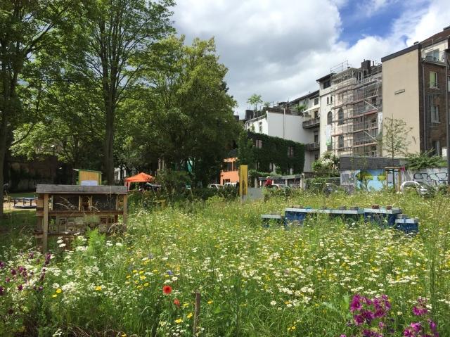 urban gardening aachen