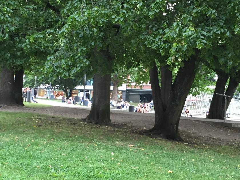 Grünoase Aachen
