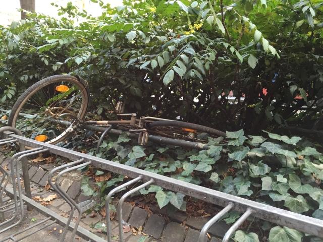 Radfahren in Aachen: Das kann schon mal im Straßenbegleitgrün enden.